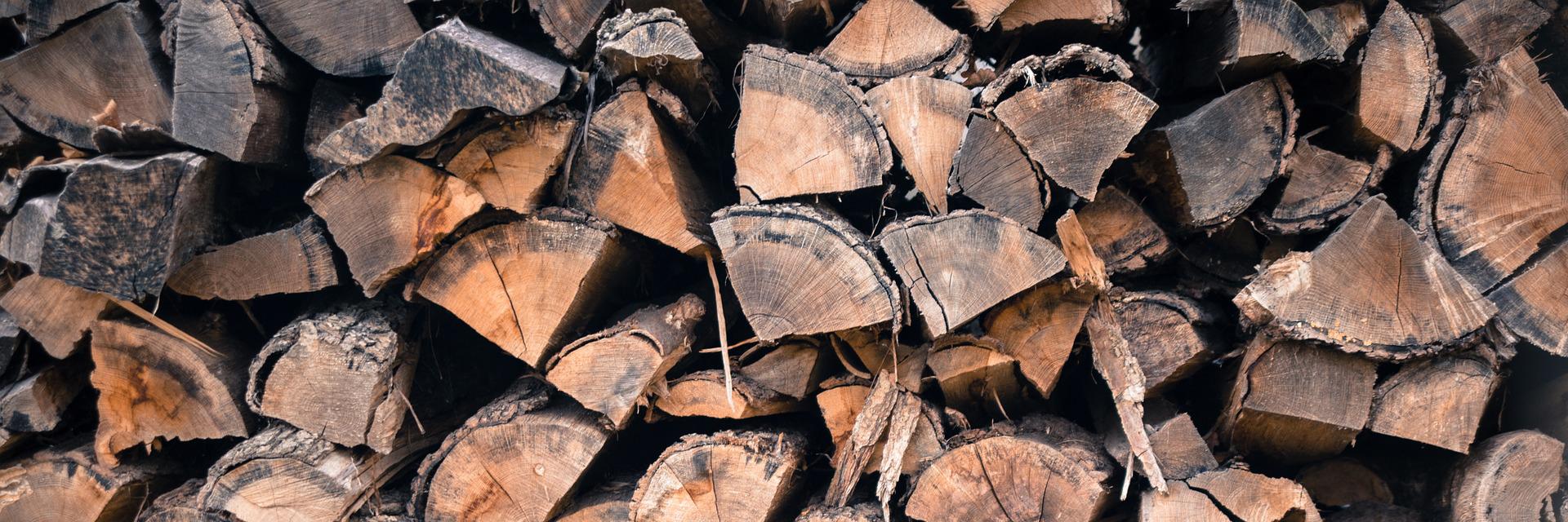 Brennholz aus Cottbus liefern lassen von track-transporte Brandenburg